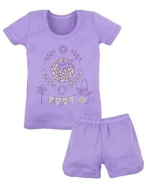Комплект футболка и шорты ДД Принт Машук. Цвет: фиолетовый
