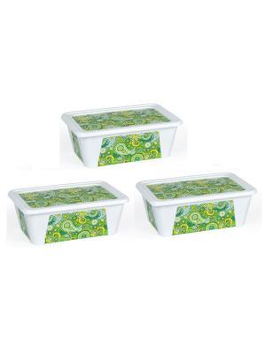 Комплект контейнеров из 3х шт. ПЕЙСЛИ прямоугольный с декором 1,65 л. Полимербыт. Цвет: зеленый