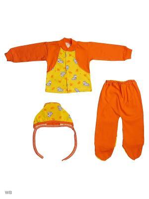Костюм Babycollection. Цвет: оранжевый, желтый