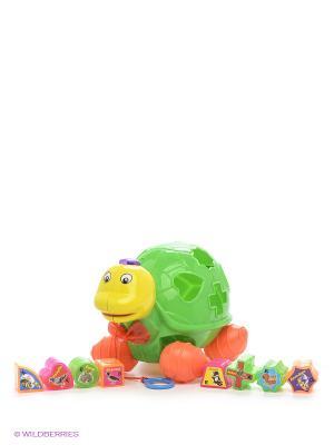 Развивающая игрушка Сортер-каталка S-S. Цвет: зеленый