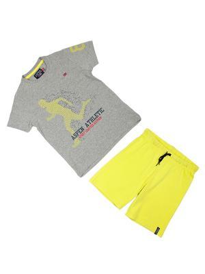Костюм Aspen Polo Club. Цвет: серый