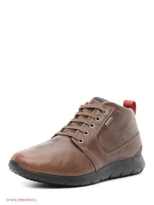 Ботинки GEOX. Цвет: серо-коричневый