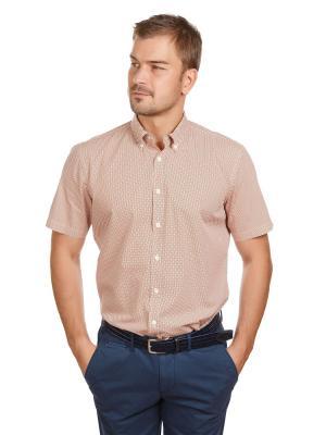 Рубашка McNeal. Цвет: рыжий, кремовый