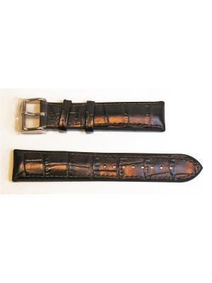 Ремень для часов, ADVENTURE, им.аллигатора, подложка каучук, коричневый, 20 мм Rhein Fils. Цвет: темно-коричневый, коричневый