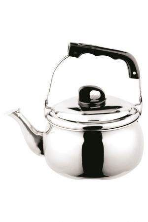 Чайник металлический 5 л Bekker. Цвет: серебристый