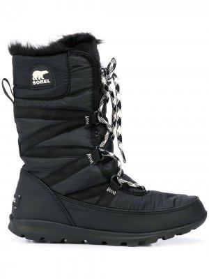 Ботинки на шнуровке с подкладкой Sorel. Цвет: черный