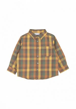 Рубашка Coccodrillo. Цвет: разноцветный