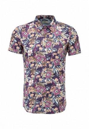 Рубашка Alcott. Цвет: разноцветный