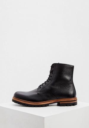 Ботинки Cerruti 1881. Цвет: черный