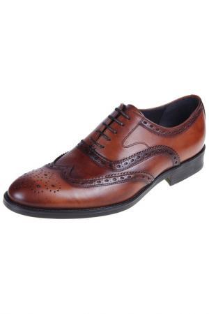 Туфли-оксфорды Malatesta. Цвет: tan