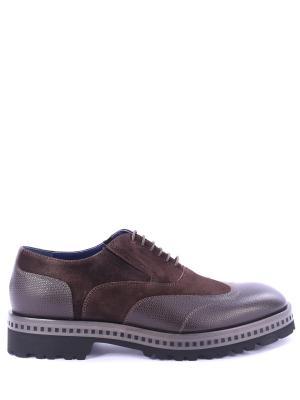 Комбинированные туфли-оксфорд Alberto Guardiani. Цвет: коричневый