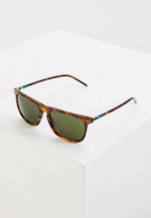 Очки солнцезащитные Polo Ralph Lauren PH4168 501771. Цвет: коричневый