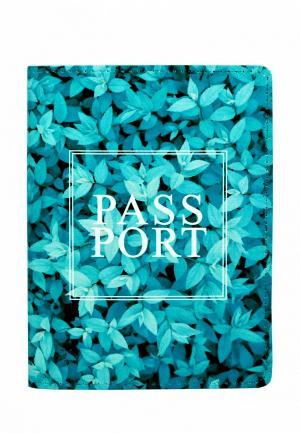 Обложка для паспорта BB1