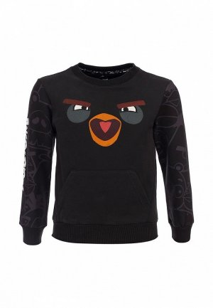 Свитшот ANGRY BIRDS AN515EKARN28. Цвет: коричневый