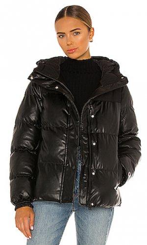Куртка oversized Champion. Цвет: черный
