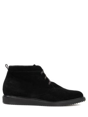 Замшевые ботинки Per te. Цвет: черный