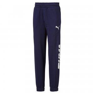 Детские штаны Alpha Sweat Pants PUMA. Цвет: синий