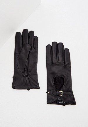 Перчатки Marciano Los Angeles. Цвет: черный