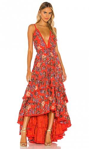 Платье primrose Alexis. Цвет: оранжевый