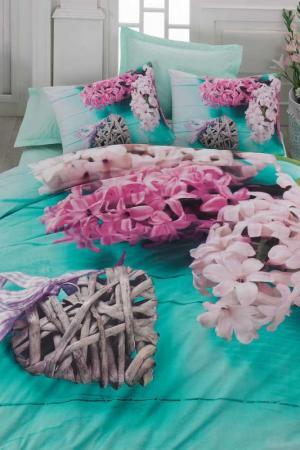 Комплект постельного белья Cotton box. Цвет: turquoise, white, fuchsia
