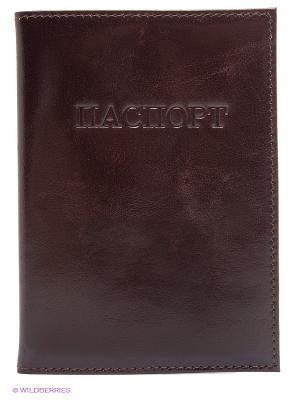 Обложка для паспорта Olci. Цвет: темно-коричневый
