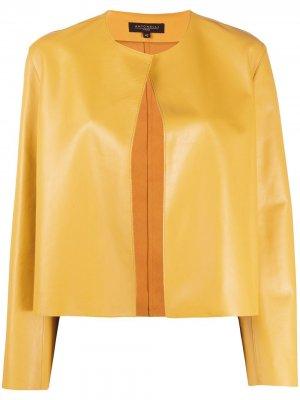 Куртка без застежки Antonelli. Цвет: желтый