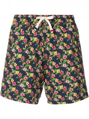 Плавки-шорты с цветочным принтом Altea. Цвет: синий