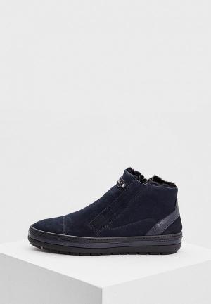 Ботинки Baldinini BA097AMCEFZ0. Цвет: синий