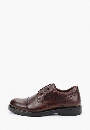Туфли Alessio Nesca. Цвет: коричневый