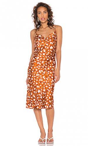 Мини платье printed Bardot. Цвет: коньяк
