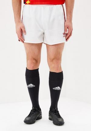 Шорты спортивные adidas Originals RUSSIAN SHORTS. Цвет: белый