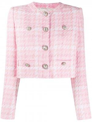 Укороченный твидовый жакет в клетку Alessandra Rich. Цвет: розовый
