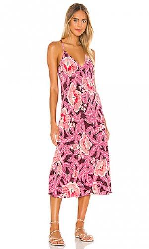Платье allianna Equipment. Цвет: фиолетовый
