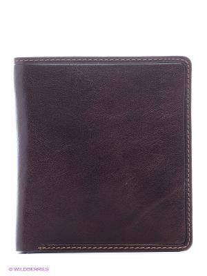 Бумажник ENO2 Visconti. Цвет: коричневый