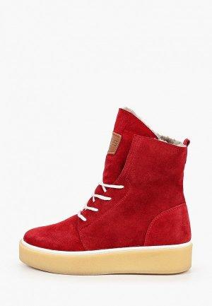 Ботинки HCS. Цвет: красный