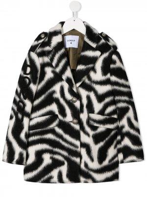 Пальто с зебровым принтом Dondup Kids. Цвет: черный