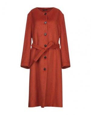 Пальто TRUE TRADITION. Цвет: ржаво-коричневый