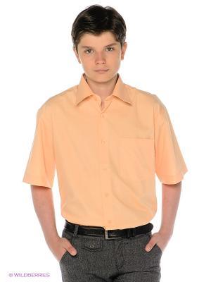 Рубашка Davani. Цвет: персиковый