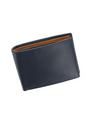 Бумажник PM101 Visconti. Цвет: синий