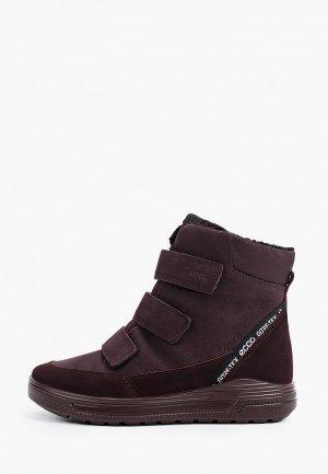 Ботинки Ecco URBAN SNOWBOARDER. Цвет: бордовый
