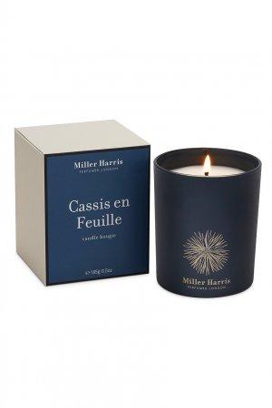 Cassis en Feuille - Свеча 185g Miller Harris. Цвет: без цвета