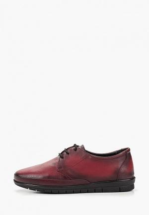 Ботинки Alessio Nesca. Цвет: бордовый
