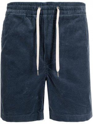 Вельветовые шорты Polo Ralph Lauren. Цвет: синий