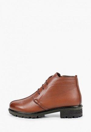 Ботинки Alessio Nesca. Цвет: коричневый