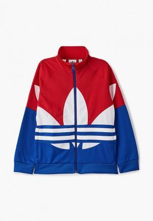 Олимпийка adidas Originals BIG TREFOIL TT. Цвет: разноцветный