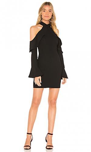 Мини платье nightshade Bardot. Цвет: черный