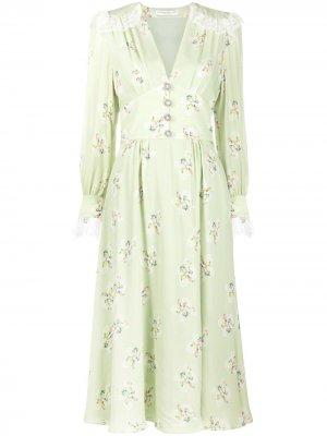 Платье миди с цветочным принтом Alessandra Rich. Цвет: зеленый