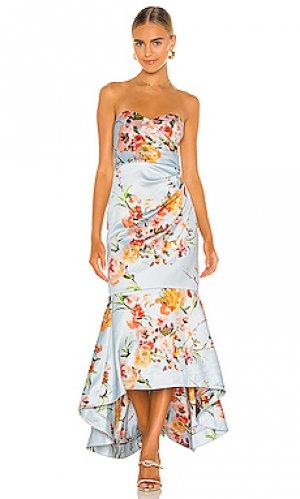 Платье selosia Parker Black. Цвет: нежно-голубой