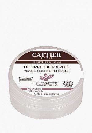 Масло для тела Cattier Карите не ароматизированное (100 г). Цвет: белый