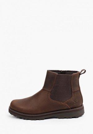 Ботинки Timberland Courma Kid Chelsea. Цвет: коричневый